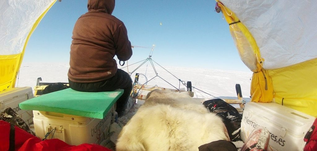 Antartic wind-powered sled