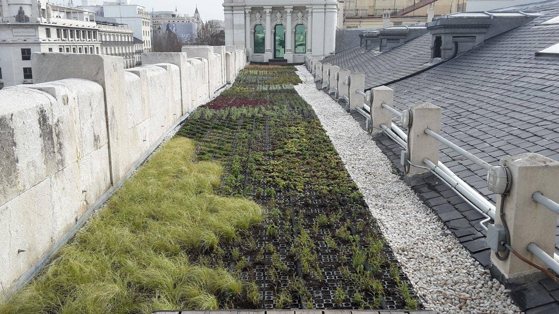 tejado verde ayuntamiento madrid