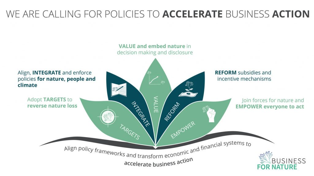 Business For Nature Sustainability call to action policy measures environment